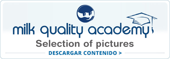 QualityAcademy-01-bt