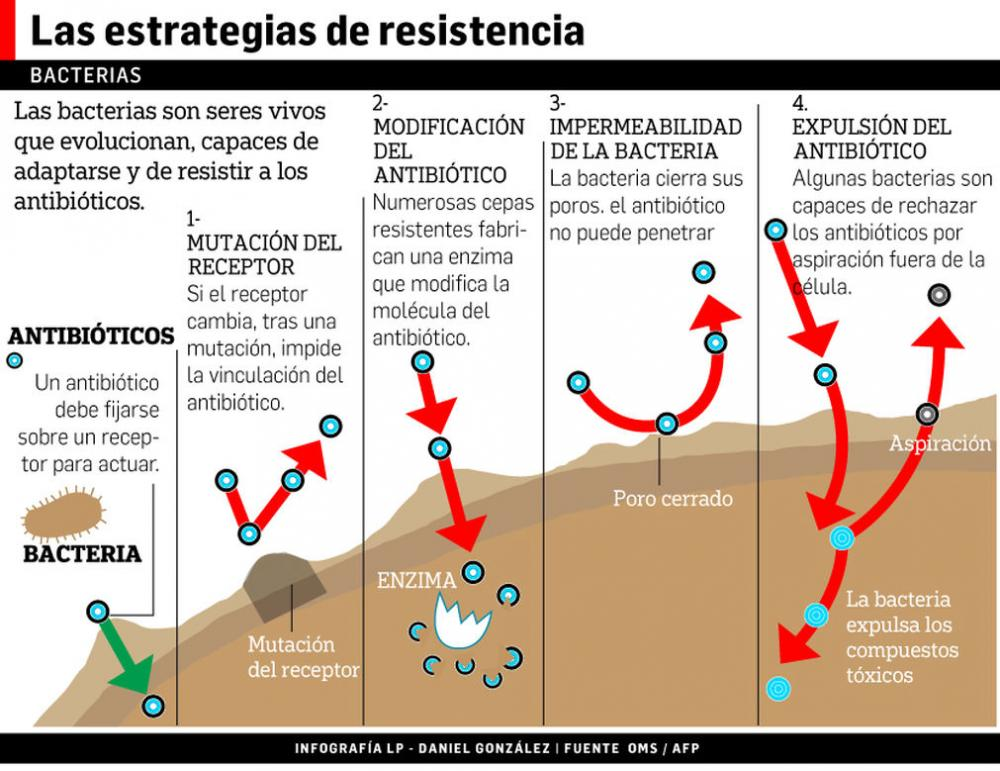 Bacterias-muestran-mayor-resistencia-antibioticos_LPRIMA20160603_0125_33.jpg